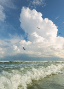 3 Gull Cloud