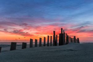 Dawn fenceline
