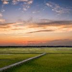 Long_Pier_sunset