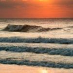 One_Gull_Sunrise