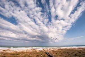 Peli Clouds