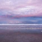 Purple_Haze