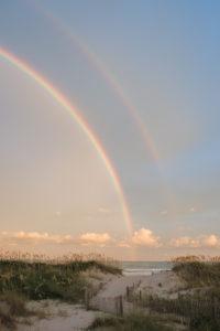 Rainbow Oats vertical