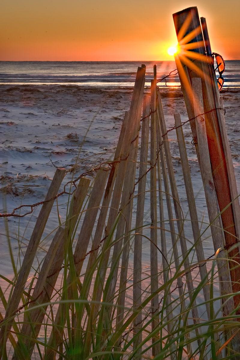 Sand Fence Sunrise
