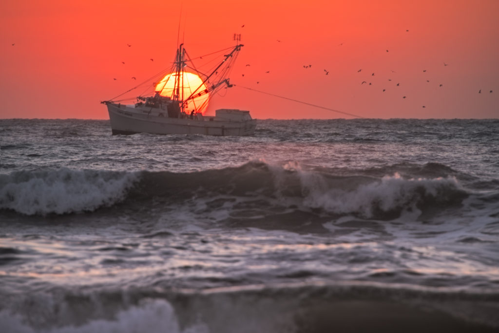 Sun_Up_Shrimper