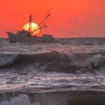 Sun_Up_Shrimper