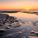 Two_Skimmer_Sunrise