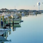 Watertower_gulls